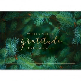 Holiday Evergreen Gratitude